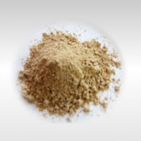 Amchur Powder 100g