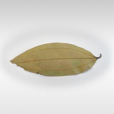Bay Leaf Tez Patta 1pkt 1