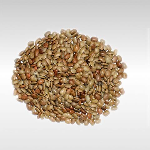 Horse Garam Beans Gahat Kulthi Dal