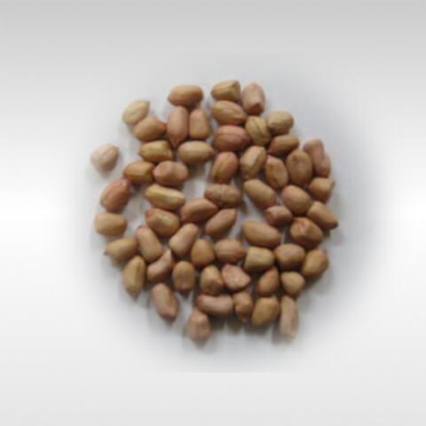 Peanuts Moongphalli 500g 1