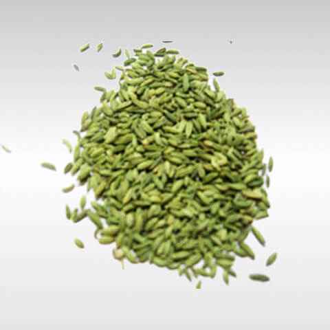 Sounf Moti Fennel Seed 100g