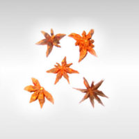Star Anise Whole 30g